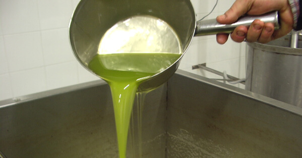 搾りたての濁ったオリーブオイル