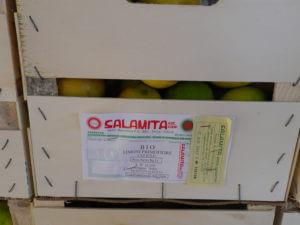 オリーブオイルと搾る有機栽培レモン